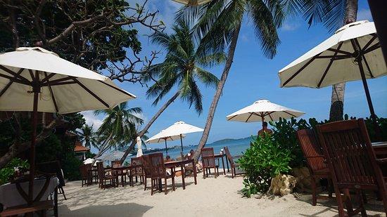Samui Paradise Chaweng Beach Resort: DSC_1420_large.jpg
