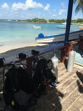 Bayahibe, República Dominicana: photo7.jpg