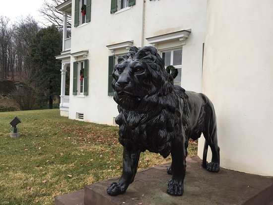 Leesburg, VA: Lions guarding the front entrance.