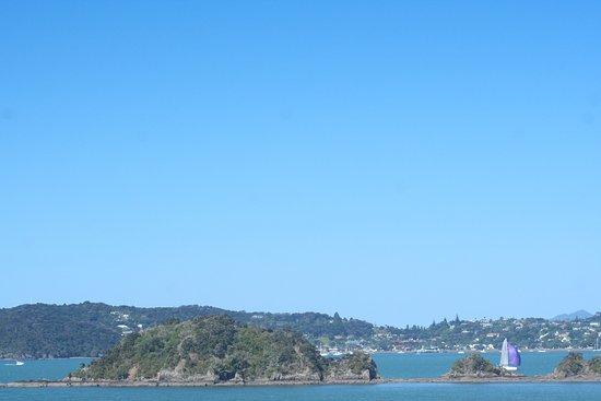 Blue Pacific Apartments Paihia ภาพถ่าย