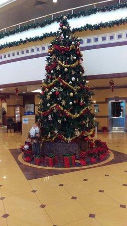 Seeb, Oman: Lovely Christmas Tree in foyer