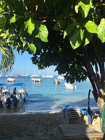 Bayahibe, República Dominicana: photo5.jpg