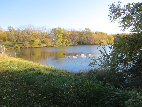 During the summer, this small lake is quite scenic and accessed thro a short trail from Nauvoo S