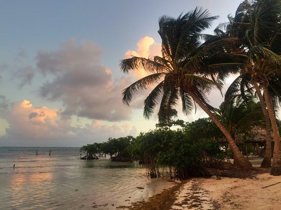 Caye Casa: view from the pier looking towards town