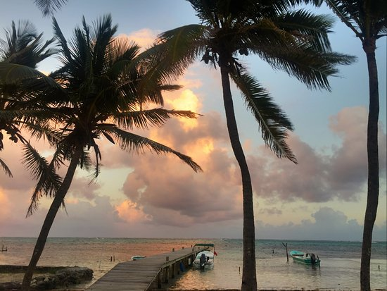 Caye Casa: another view from my room #2