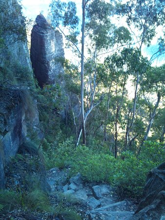 Blackheath, Australia: On the way down Perry's Lookdown - steep