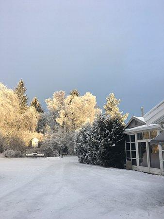 Gran Municipality, Norge: photo2.jpg