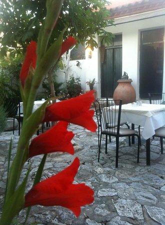 Tirnavos, Grèce : Οδος ονειρων