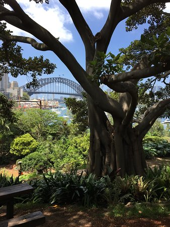 Enmore, Australien: View through secret garden