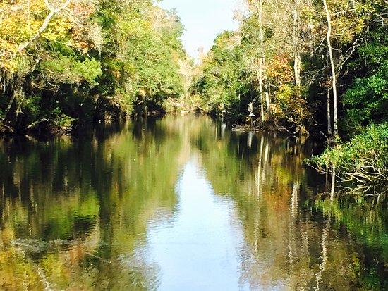 Homosassa Springs, FL: photo1.jpg
