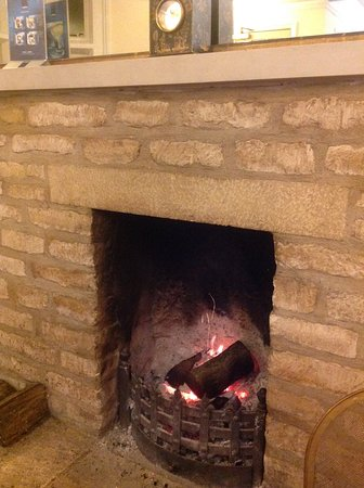 Swan Inn: Lovely meal by the fire!