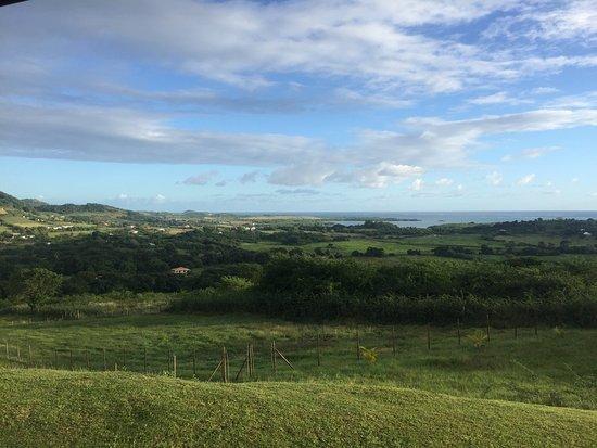 Le Marin, Martinique: photo0.jpg