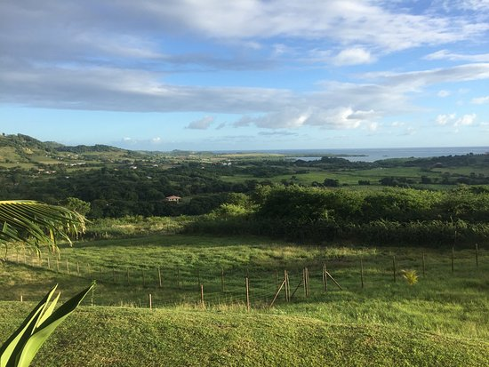 Le Marin, Martinique: photo1.jpg