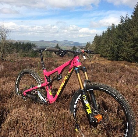 Llandegla, UK: Just me
