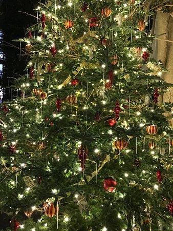 Kennett Square, Πενσυλβάνια: Grand revolving tree (detail)