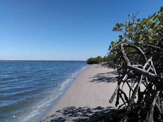 Sine Saloum-journée pic-nic dans les îles du sine saloum