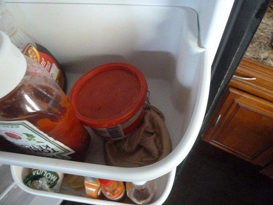 El Castillo, Costa Rica: leftovers in the fridge - unidentified brown mushy stuff