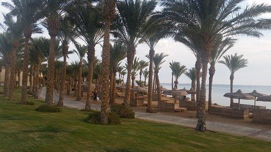 SENTIDO Palm Royale Soma Bay: 20170114_152758_large.jpg