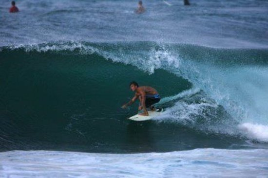 Makawao, Χαβάη: Surf tours and lessons available. This was on the north shore of Oahu at Alii beach park Haleiwa