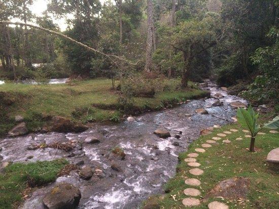 San Gerardo de Dota, Коста-Рика: Río y vista del restaurante desde el río