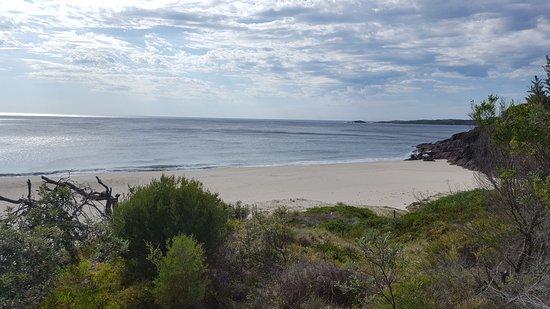 Shoal Bay, Australien: 20170118_090725_large.jpg