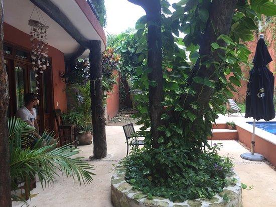 Casa Freud