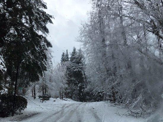 Welches, Oregón: en invierno los alrededores son espectaculares, las vista impresionantes
