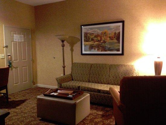Liverpool, Nova York: living room area inside the suite
