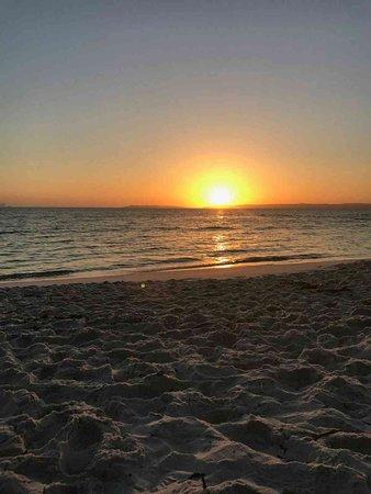 Hyams Beach, Australia: IMG-20170117-WA0146_large.jpg