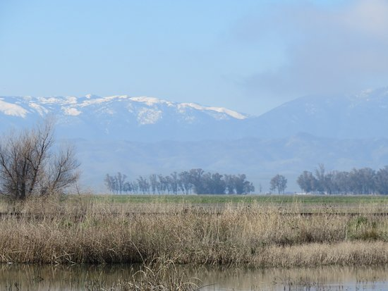 Willows, CA: Coastal Mountains seen from visitor center in winter
