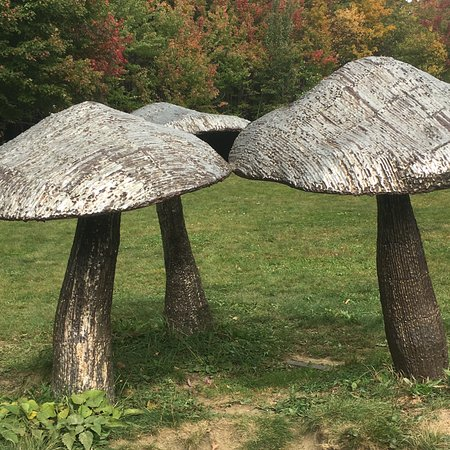 Ellicottville, นิวยอร์ก: Giant Mushrooms!