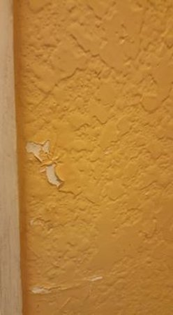 Days Inn Orlando/international Drive: large patches of peeling plaster on the walls. poor maintenance