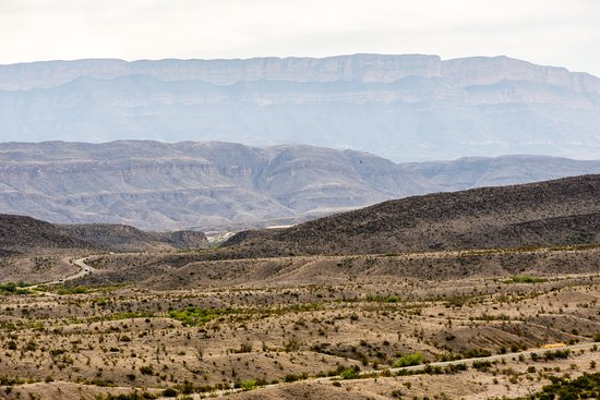 Chihuahuan Desert: Sparsely Vegetated & Layers of Rock