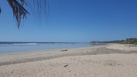 Nosara Beach (Playa Guiones): 20170117_132242_large.jpg