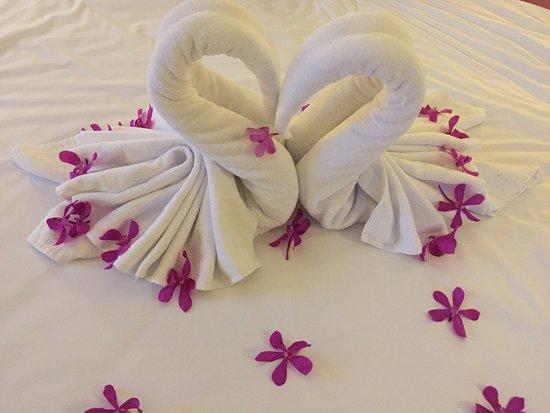 ibis Bangkok Siam Hotel: photo1.jpg