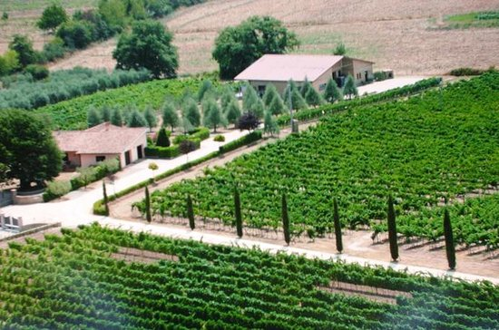 Villa Corano Winery Tour in Tuscany