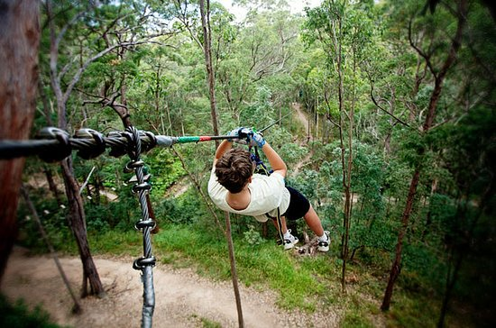 Tamborine Mountain Ropes Course...
