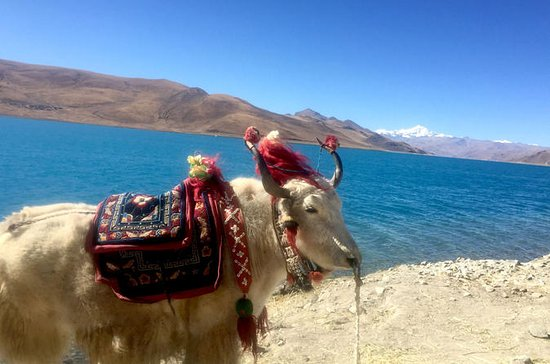 4-Night Lhasa and Lake Yamdrok