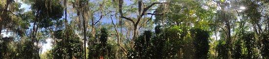 Parque Gallineral: photo7.jpg