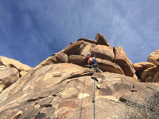 Joshua Tree, CA: 5-year-old ascends