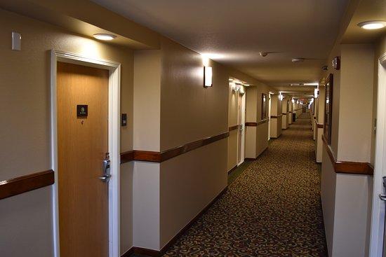 Comfort Inn and Suites Durango: Common areas