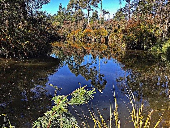 Deloraine, Australia: photo2.jpg