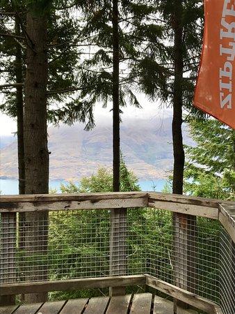 Ziptrek Ecotours Photo