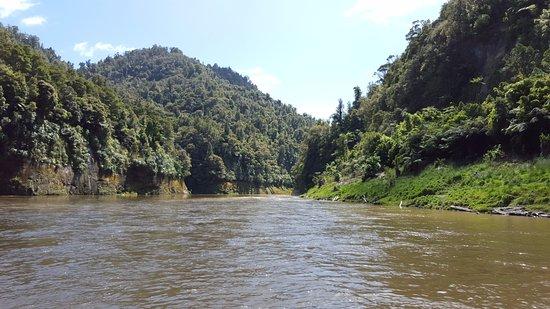 Wanganui, Nueva Zelanda: NZ wilderness