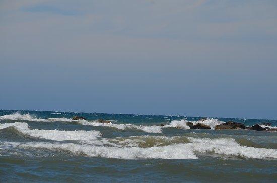 Devonport, Αυστραλία: Coles Beach