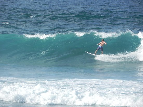 Paia, HI: surfs up
