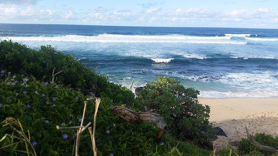 Paia, Hawái: waves
