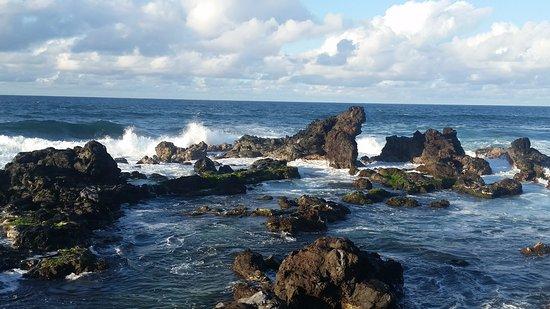 Paia, Hawái: pride rock
