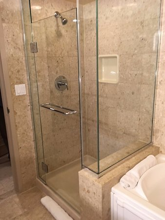 HUGE amazing bath tub and stand alone shower in tower room - Picture ...