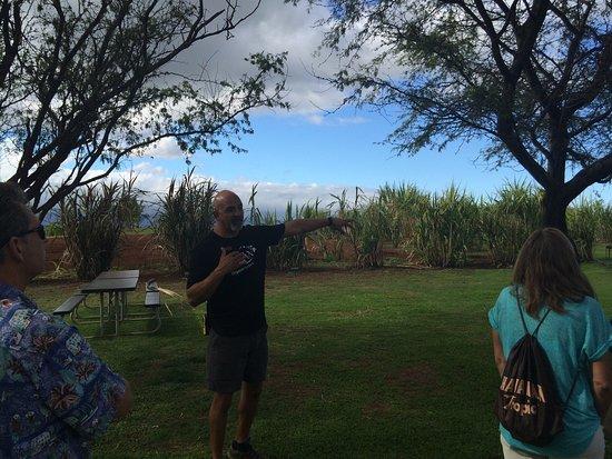 Kula, هاواي: photo1.jpg